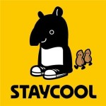 staycool taiwan mv