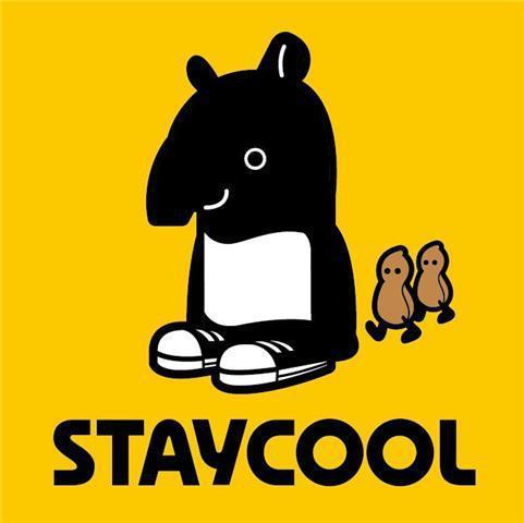 staycool taiwan mv